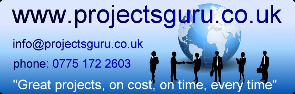 project managers and business consultants
